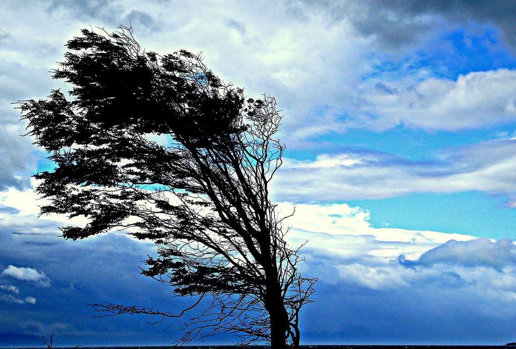 Co dělá silný vítr s venkovními roletami a žaluziemi