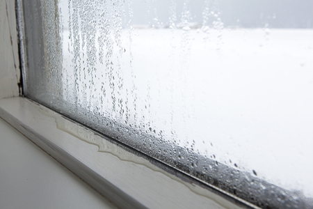 Kondenzace vody a plíseň na oknech